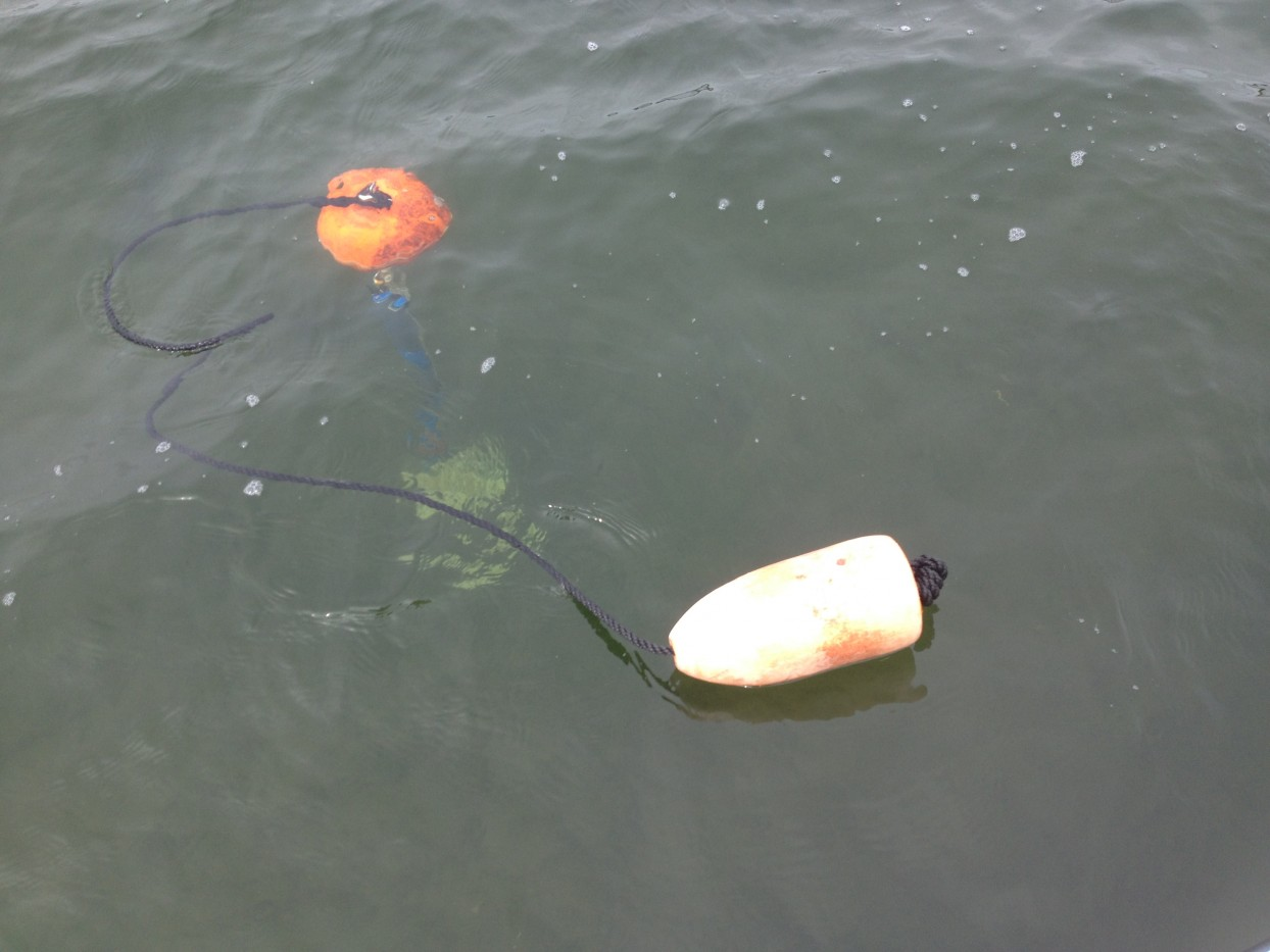 Water probe deployed
