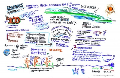 Graphical recording of H. Baumann's keynote lecture