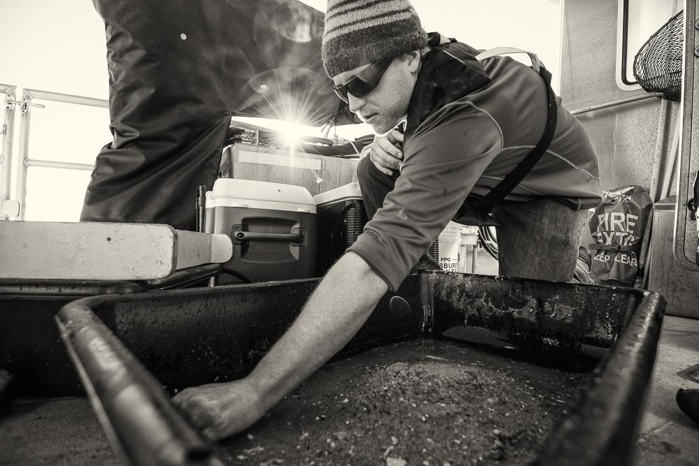 Chris RV Auk Sediment grab