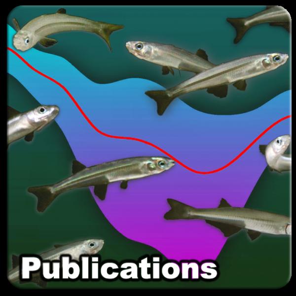 Publications_04