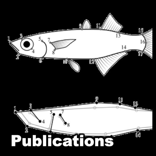 Publications_05