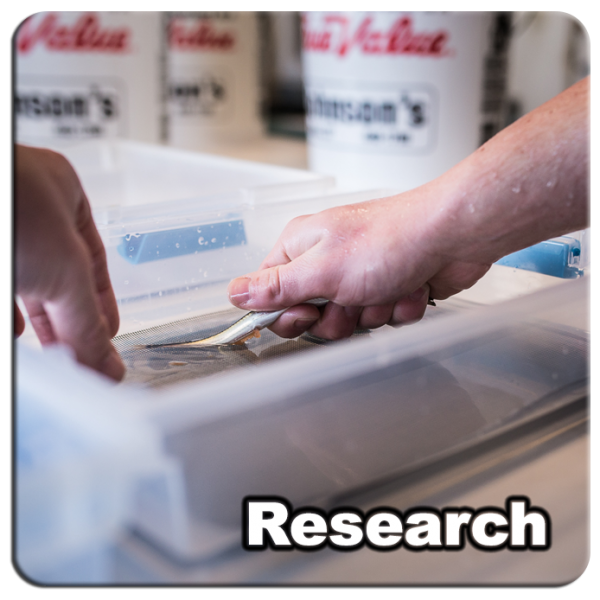 Research_04