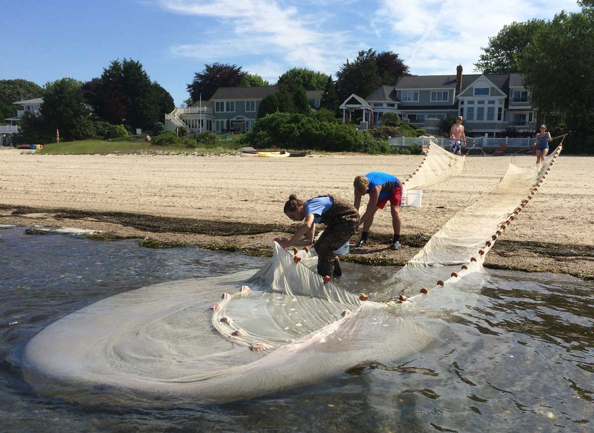 pulling ashore