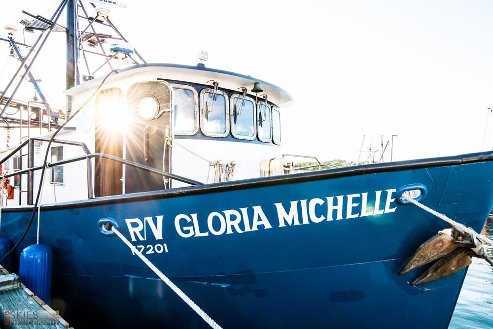 Massachussets Bottom Trawl Survey 2016-02