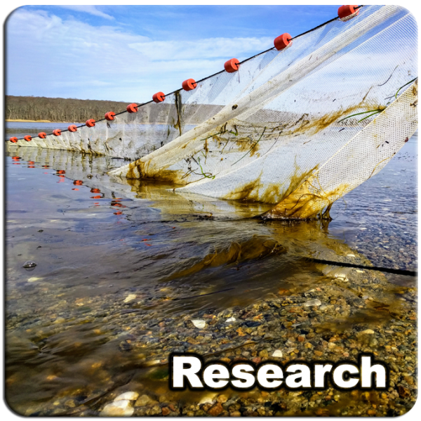 Research_10