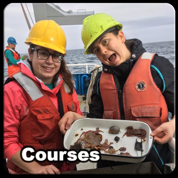 Courses_05