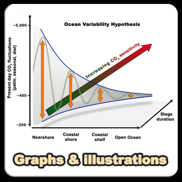 Graphs_01