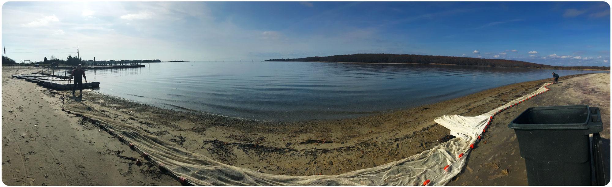 Mumford-Cove-seine-11-11-19
