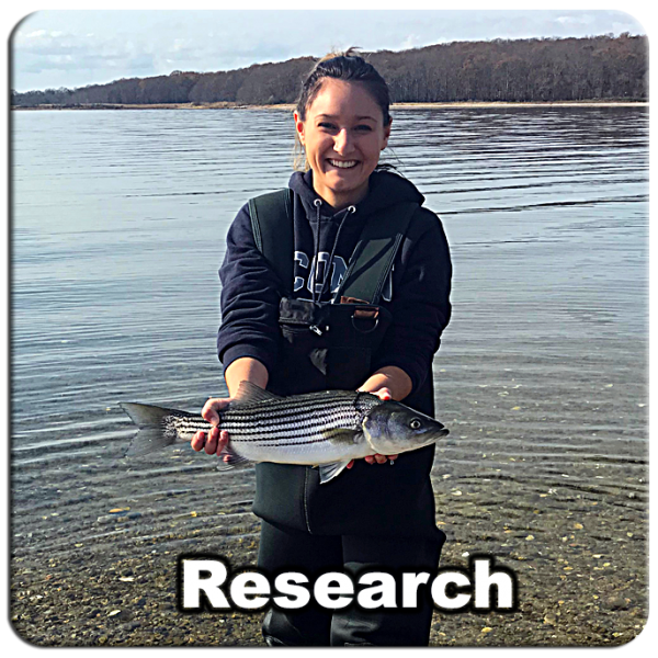 Research_09